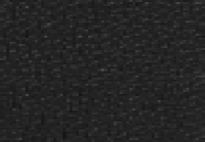 ブラック/ラゲッジ