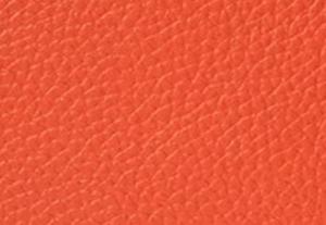 オレンジスパイス