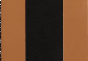 ブラウン/エイコーン
