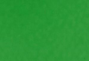 パームグリーン