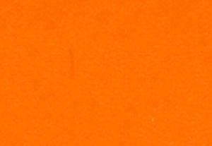 デイ グロー オレンジ