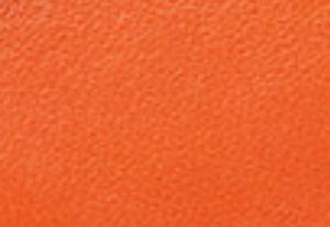 フレイムオレンジ